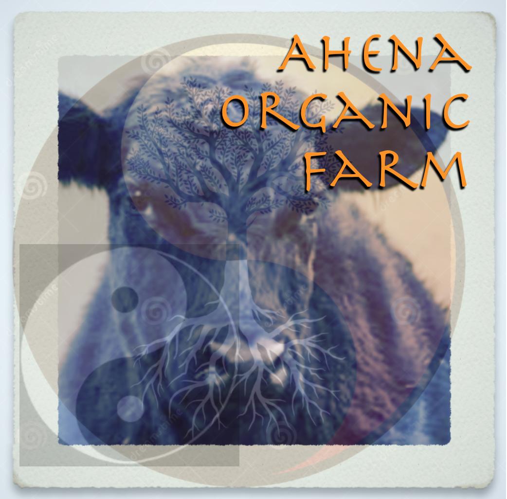 Ahena Organic Farm